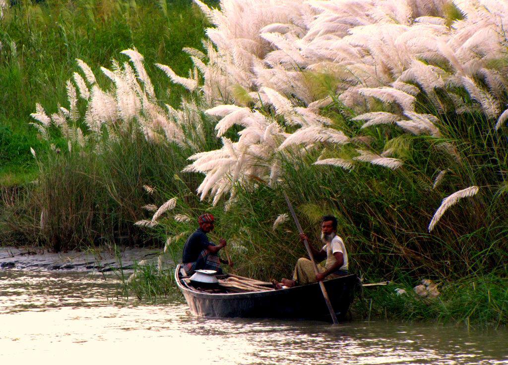 Mystic Oasis Meghna Bangladesh Ganag 25.jpg