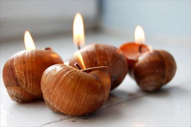 jinn-in-a-bottle-awesome-diy-snail-shell-candle-decor-ideas12